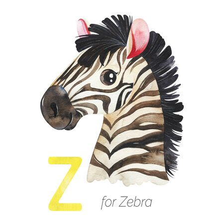 Watercolor Animals Alphabet.Learn letters with funny animals. Cute Zebra for Z letter. Perfect for education, baby shower, children prints or room decor, template cards, books and much more