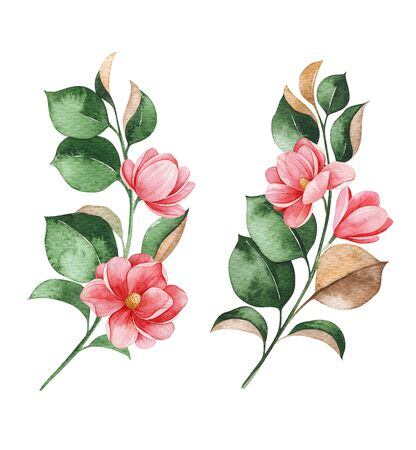 Beautiful watercolor magnolia blossom branches on white background. Hand painted illustration. Perfect for wedding, bridal shower, invitation, patterns, wallpapers, logo, textile and much more