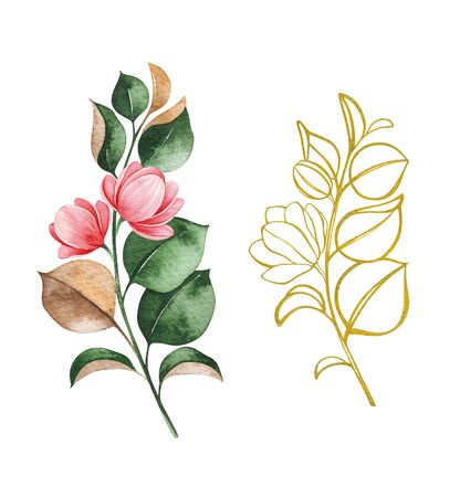 Watercolor and golden ink line art magnolia blossom branches on white background. Hand painted illustration. Perfect for wedding, bridal shower, invitation, patterns, wallpapers, logo, textile and much more Stockfoto