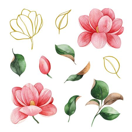 Watercolor elements on white background. Magnolia flowers and leaves. Hand painted illustration. Perfect for wedding, bridal shower, invitation, patterns, wallpapers, logo, textile and much more
