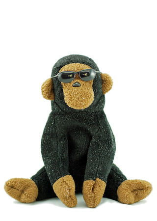 monkey with sunglasses