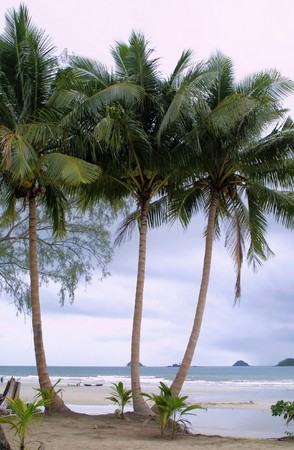 Huts and coconut palms on the beach on Chang island, Thailand Stock Photo - 7440230