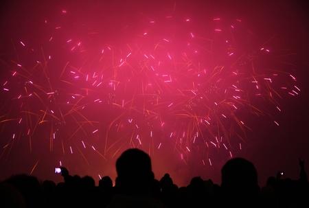 사람들은 스위스 취리히에서 열리는 새로운 2011 년 불꽃 놀이를보고 있습니다.