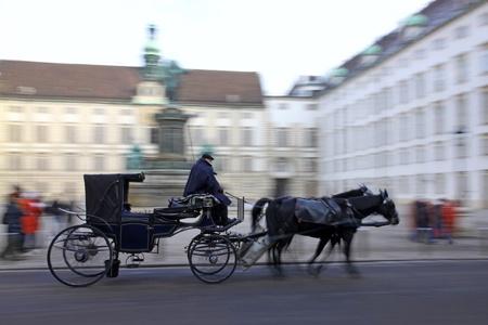Horse-driven carriage at Hofburg palace, Vienna, Austria