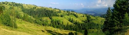 mountainside: Panoramic view of summer Carpathian mountains, Ukraine