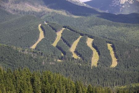 Tracks of famous Bukovel ski resort in summer, Carpathian mountains, Ukraine Stock Photo - 10800918