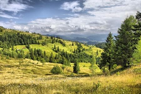 카르 파티 아 산맥의 Yaremche에서 마을 근처 산 풍경, 우크라이나 (HDR 필터)