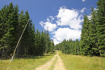 Ski track in summer. Bukovel ski resort, Carpathian mountains, Ukraine Stock Photo - 10921985