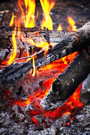 Close-up wooden campfire with burning coals photo