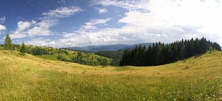 Panoramic view of summer Carpathian mountains, Ukraine Stock Photo - 11252399