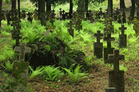 Detail of an old 19th century graveyard with lots of trees in Khust, Transcarpathian region, Ukraine Stock Photo - 11929664
