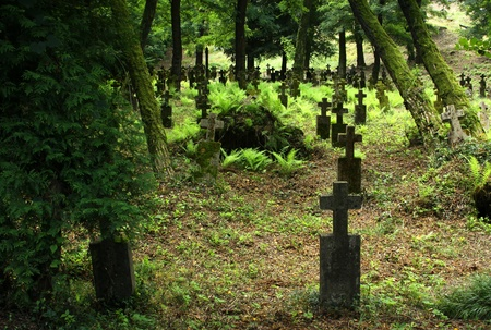 Detail of an old 19th century graveyard with lots of trees in Khust, Transcarpathian region, Ukraine Stock Photo - 12066480