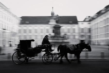 hofburg: Cheval ax�e sur le transport � la Hofburg Palace � Vienne, en Autriche, noir  blanc