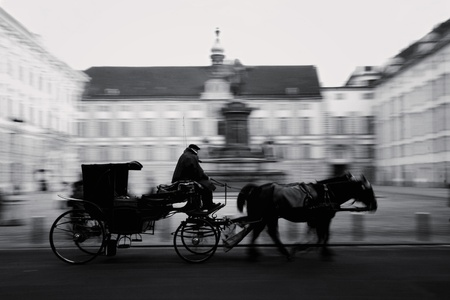 Horse-driven carriage at Hofburg palace in Vienna, Austria, black/white