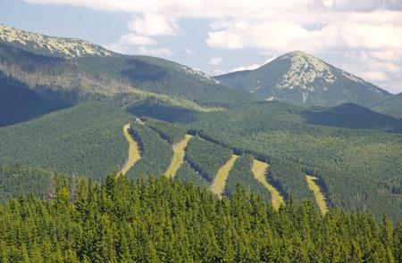 Tracks of famous Bukovel ski resort in summer, Carpathian mountains, Ukraine Stock Photo - 12389838