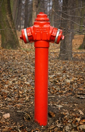 Close-up red fire hydrant in a park of Warsaw, Poland Stock Photo - 12779088