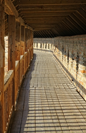 Row of wooden columns in Medieval Ljubart fortress in Lutsk, Ukraine photo