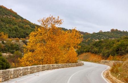 kalampaka: Curved asphalt road at Meteora Mountains near Kalampaka town, Greece