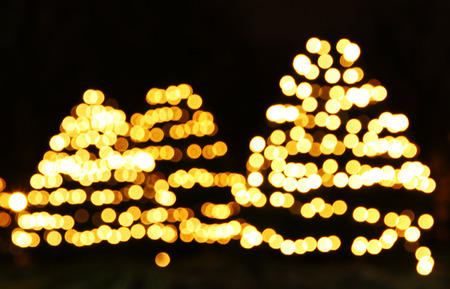 New Year trees made from bokeh lights photo