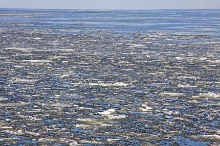 ice floes: Sea surface with broken ice floes in early spring