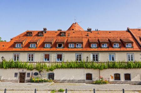 devanture: Maribor, Slov�nie - 23 mai 2014: 400 ann�es Old Vine, se d�veloppe sur la fa�ade de l'�difice Old Vine House. Il est la plus vieille vigne du monde, enregistr� dans le Livre Guinness des Records