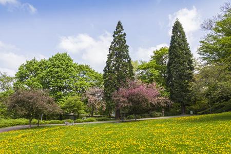 citypark: CityPark Stadtgarten in center of Freiburg im Breisgau city, Baden-Wurttemberg state, Germany