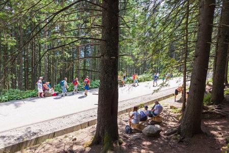 oko: TATRA MOUNTAINS, POLAND - AUGUST 4, 2015: Group of tourists walking on the road to Morskie Oko lake, Czarny Staw and Rysy in High Tatra Mountains near Zakopane, Poland Editorial