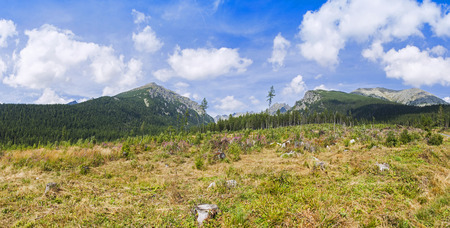 tatry: Panoramic view of High Tatras Mountains (Vysoke Tatry) in Slovakia. On the way to Popradske Pleso lake Stock Photo