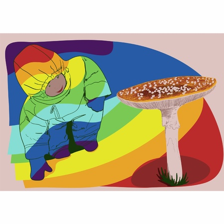 a fly agaric: One little boy looks at an inedible mushroom a fly agaric