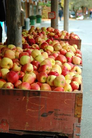 Bushels van appels op een straat markt Stockfoto - 11196821