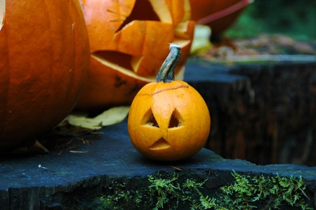 A group of Halloween pumpkins Editöryel