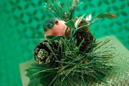 Christmas Birdie
