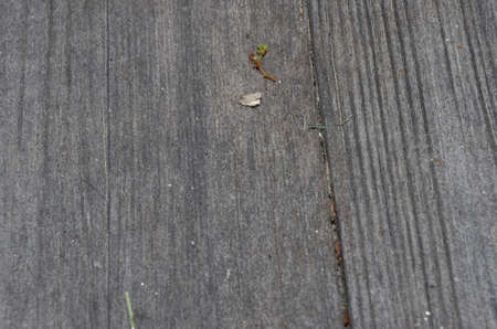 closeup of old grey board
