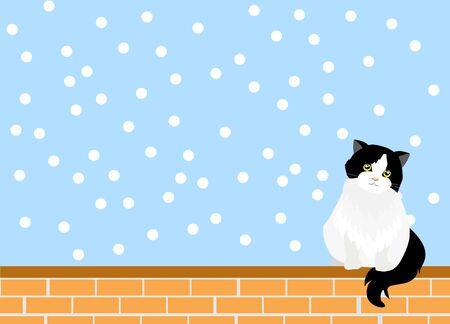 Adorable back and white persian tuxedo cat sitting on red brick wall with falling snow. Isloated on light blue background. Vector Illustration. Idea for cute template and background. Foto de archivo - 150173232