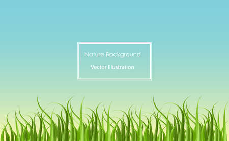 Grass field background for nature, ecology, environment or lawn mower service template. Website and landing page.