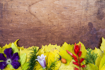Yellow and green photo with autumn flowers and leaves on wooden background 版權商用圖片