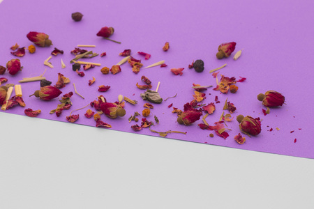 spectral colour: Little red roses with petals on violet and white background