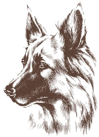 Shepherd dog sketch Ilustrace