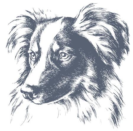 少し犬のベクトルのスケッチ  イラスト・ベクター素材