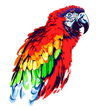 赤いオウム  イラスト・ベクター素材