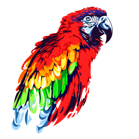 talons: red parrot
