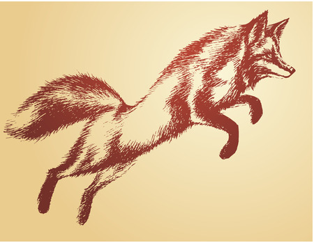 red animal: Fox jumper vector sketch