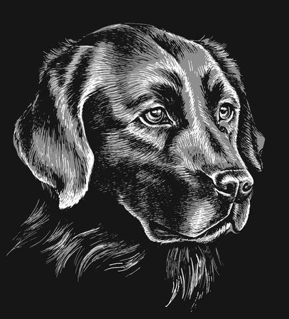 Zwarte en witte labrador schets Stock Illustratie