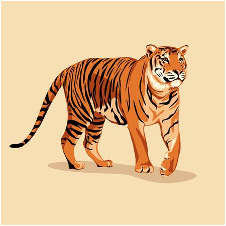 Wild tiger Ilustrace