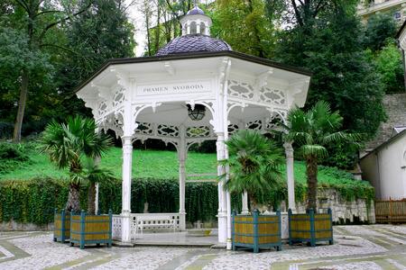 karlovy: Hot spring Pramen Sadov in Karlovy Vary Karlsbad Editorial