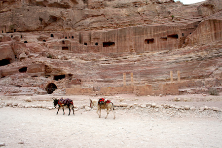 petra  jordan: Tombs carved into the red sandstone in Petra, Jordan. Ancient city, capital of the Nabataean kingdom - Petra in Jordan Stock Photo