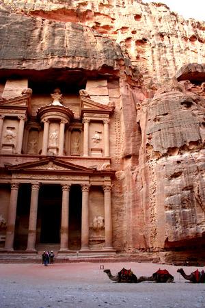 petra  jordan: Camels and tourists in Petra, Jordan