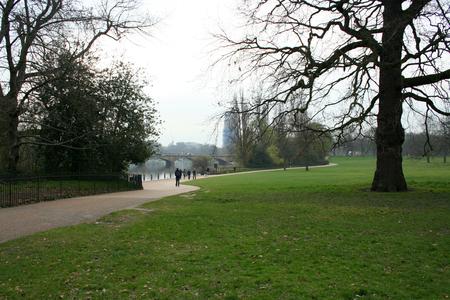 hyde: Hyde Park, London. Road trough woods in London Hyde Park