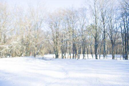 Blurred winter background. Beautiful snowy winter forest. Banco de Imagens
