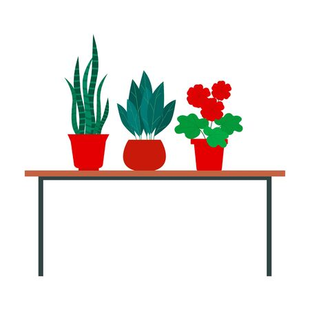 Indoor plants stand on the table. Different home flowers in pots. Illustration on a white background